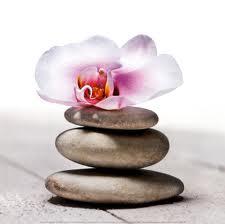 Galet zen et orchid e - Symbole de l orchidee ...