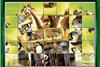 Puzzles de Madagascar