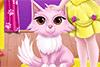 Le nouveau chat de Maya