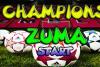 Zuma du foot