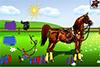Préparer un cheval pour une balade
