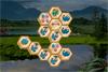 Mahjong dinosaures