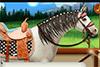 Le cheval de Chloé