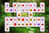 Mahjong des fleurs 2016