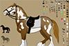 Créer un beau cheval