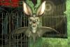 Jeu d'halloween en ligne : halte aux chauves-souris