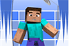 Laver Steve