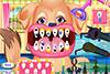 Dentiste pour chien